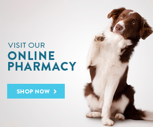Order medications through Vets First Choice